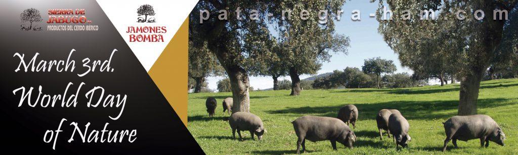 World Day of Nature pata-negra-ham